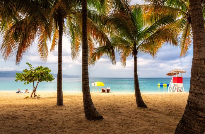 Beach in Jamaica with tall palm tree on Caribbean sea, Montego Bay
